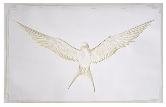 Adam-Feibelman-Arctic-Tern-2017.-Hand-Cut-Paper-Assemblage-45-x-65-inches0A.jpg